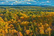 Autumn colors in Neebing County<br />South of Thunder Bay<br />Ontario<br />Canada