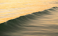 Wave at sunset, Gulf of Mexico, Florida