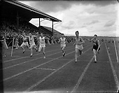 1956 - All Ireland Athletic and Cycling Championships at the Iveagh Grounds