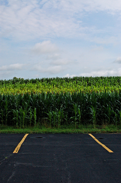 Parking spots by planted crops..