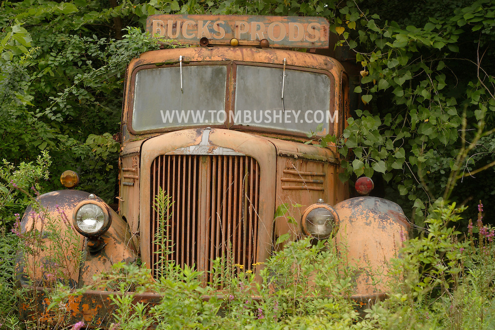 Town of Wallkill, NY - An old Mack truck sits abandoned and partly covered by weeds and trees on Aug. 24, 2007.