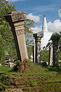The Ruwanweliseya Dagoba or stupa.