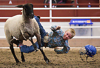 Eli Paxton, 10, of Mullen, Neb., flies off a sheep at the end of his ride during the Midwest Mutton Bustin' Finals Friday in the Five Points Bank Arena during the Nebraska State Fair in Grand Island. (Independent/Matt Dixon)