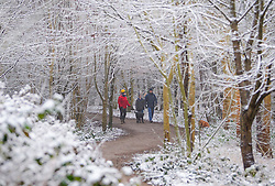© Licensed to London News Pictures. 12/02/2017. Princess Risborough, UK. A family walk their dogs through a snow covered landscape in Princess Risborough, Buckinghamshire, south east England, as large parts of the UK wake to freezing temperatures and snowfall over night. Photo credit: Ben Cawthra/LNP