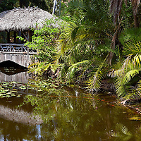Chickee Bridge at Bonnet House in Fort Lauderdale, Florida<br /> The bonnet lilies floating in this pond were the inspiration for the name Bonnet House, the former estate of Frederic Bartlett in Fort Lauderdale.  Perhaps that is not surprising because when he married his second wife Evelyn, her last name was Lilly. The thatched building is a pedestrian bridge called Chickee.  This scene on the museum property is so tranquil that it could have inspired Claude Monet to create an impressionist painting.