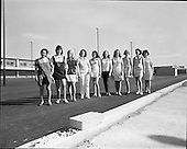 1972 - Musgrave Brothers Promotion Girls