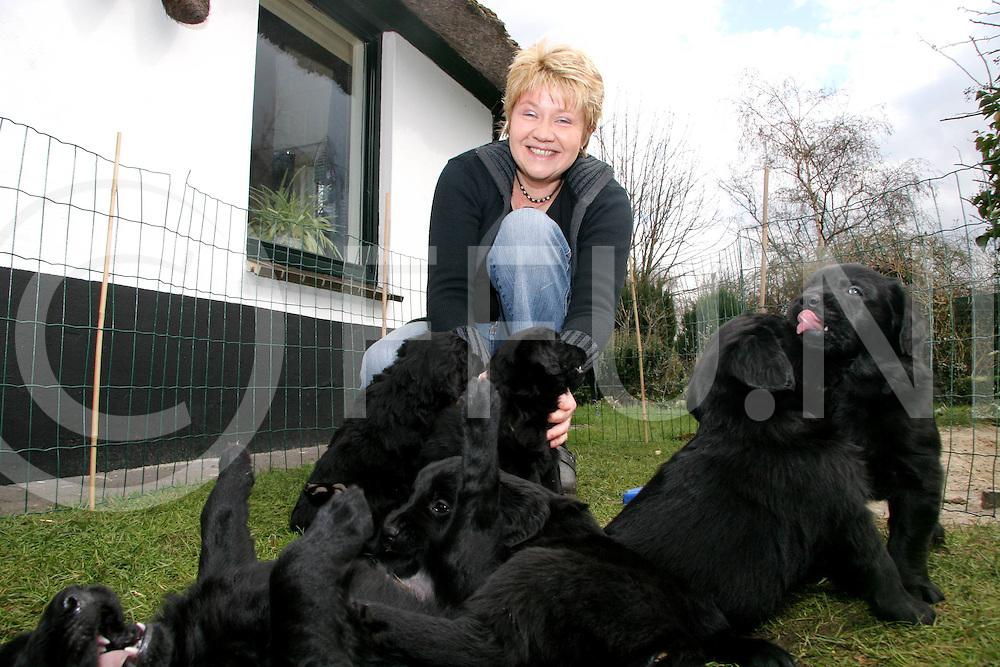 060414, oud lutten, ned<br /> Anja van Dijk met haar nest puppies<br /> voor rubriek gespot<br /> fotografie frank uijlenbroek&copy;2006 jasper van der zwan
