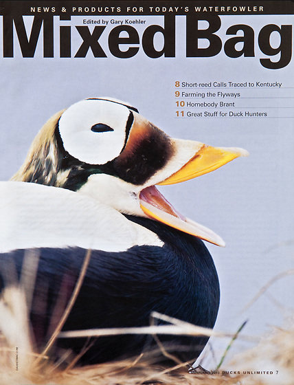 Ducks Unlimited Mixed Bag, March-April 2010