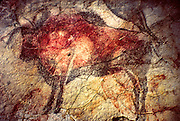 SPAIN, PREHISTORIC, ALTIMIRA cave paintings; bison, deer, horses