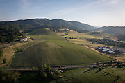 Aerial helicopter view over Abacela vineyard, Umpqua Valley, Southern , Oregon