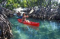 Kayaking through mangrove tunnels