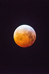 © Licensed to London News Pictures.<br /> Aberystwyth, UK. Monday 21/01/2019. At just after 5am a crystal clear and bitterly cold morning, the Blood Red Wolf Moon, eclipsed by the earth and turning a deep rich red, sets over Aberystwyth Wales UK. The full moon is passing through  the shadow of the earth and  appears red because it is illuminated by the weak diffused sunlight reaching it through the earth's atmosphere. Photo credit: Keith Morris/LNP