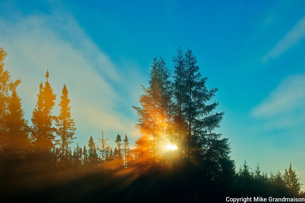 Boreal forest in fog st sunrise with sunburst.<br />Chibougameau<br />Quebec<br />Canada