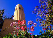 Image of Coit Tower on Telegraph Hill in San Francisco, California