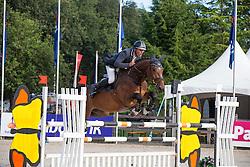 Maarse Dave (NED) - Liefhebber's Chippendale<br /> KWPN Paardendagen - Ermelo 2012<br /> © Dirk Caremans