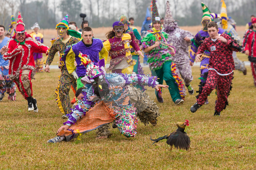 Revelers try to grab a live chicken during the traditional Cajun Courir de Mardi Gras chicken run February 15, 2015 in Church Point, Louisiana. The event involves 900-hundred costumed revelers competing to catch a live chickens as they move from house to house throughout the rural community.