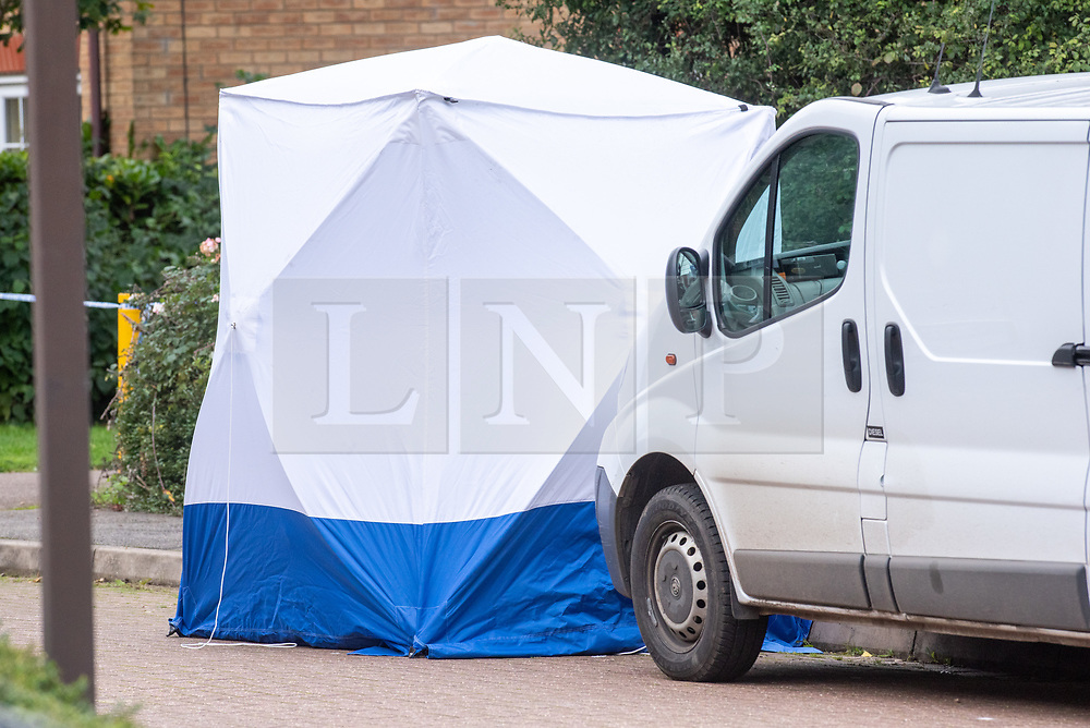 © Licensed to London News Pictures. 20/10/2019. Milton Keynes, UK. A police forensic tent sits on Archford Croft as police investigate the double murder of two 17-year-old boys. Thames Valley Police and South Central Ambulance Service were called to a property in Archford Croft, Emerson Valley, Milton Keynes, just before midnight following reports of a stabbing having taken place. Two adult males have also been injured in the incident. Photo credit: Peter Manning/LNP