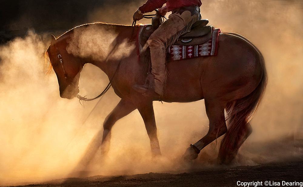 Cowboy Riding a Reining Horse