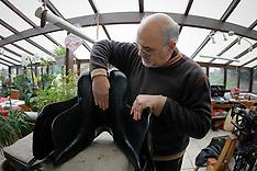 Teirlynck Denis 2009