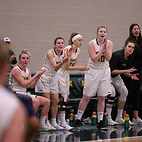 The bench in action during the Women's Basketball home game on January  19 at Centre for Kinesiology, Health and Sport. Credit: Arthur Ward/Arthur Images