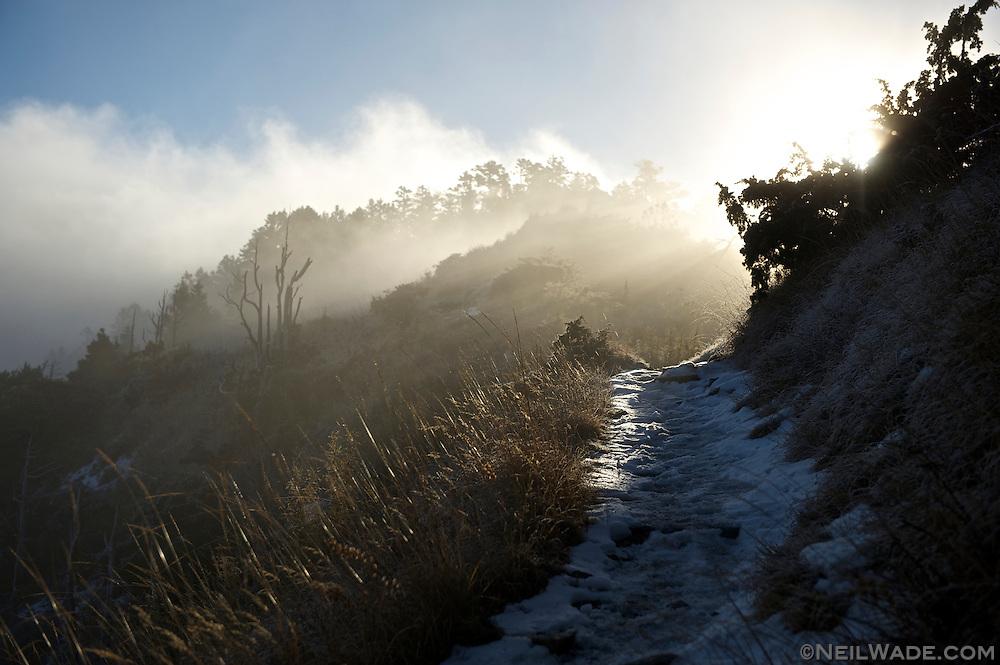 Sunrise on the East Xue Trail, headed towards Snow Mountain, Taiwan.