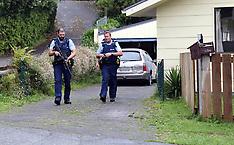 Tauranga, Police hunt tyre slasher in Welcome Bay