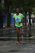 Philadelphia - 2016 Philadelphia Parks and Recreation Blue Cross Broad Street Run