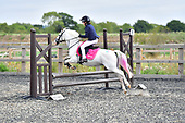 41 - 18th Aug - Show Jumping