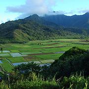 HAWAI'I - Kauai