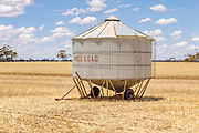 Mobile field bin grain silos in paddock after wheat harvest