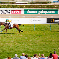 Grinch (L. Bails) wins Prix De Hotel Barriere Le Royal Deauville in Deauville, France 27/08/2017, photo: Zuzanna Lupa