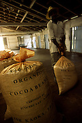 Man carries a bag containing organic cocoa beans. Cocoa is the main export from Sao Tome and Principe and has been for centuries the economic support of the country.