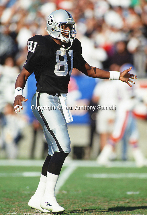 Los Angeles Raiders wide receiver Tim Brown (81) gets a low five in celebration during the NFL AFC Wild Card postseason playoff football game against the Denver Broncos on Jan. 9, 1994 in Los Angeles. The Raiders won the game 42-24. (©Paul Anthony Spinelli)