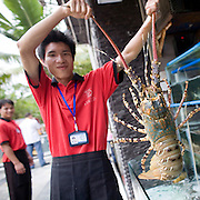 """""""Donghai Gong"""" translates as Donghai Palace, restaurant in Sanya, China. A server shows off a lobster."""