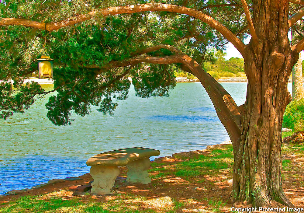 Bench and tree on the banks of Lake Maria Sanchez in historic downtown St. Augustine, Florida