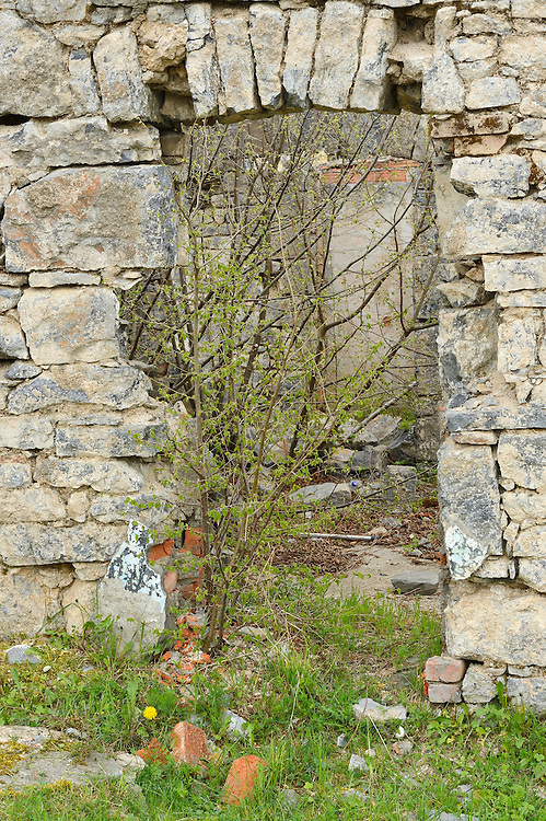 Land abandonment, Velebit mountains Nature Park, Croatia