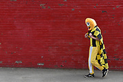 Burton Albion fans arrive in fancy dress to mark their last away day of the season during the EFL Sky Bet Championship match between Barnsley and Burton Albion at Oakwell, Barnsley, England on 29 April 2017. Photo by Richard Holmes.