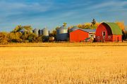 Red barn at sunrise<br />Rycroft<br />Alberta<br />Canada