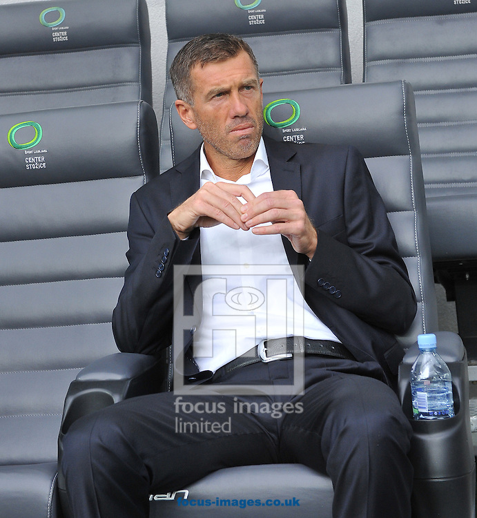Srecko Katanec, head coach of Slovenia during the UEFA Euro 2016 Qualifying match at Stozice Stadium, Ljubljana<br /> Picture by Stefano Gnech/Focus Images Ltd +39 333 1641678<br /> 14/06/2015