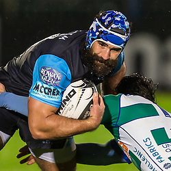 Glasgow Warriors v Treviso | Pro12 | 31 October 2014