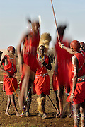Massai warriors traditional dance involving jumping.