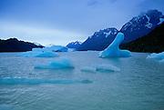 Glaciar De Grey, Parque Nacional, Torres Del Paine, Patagonia, Chile<br />