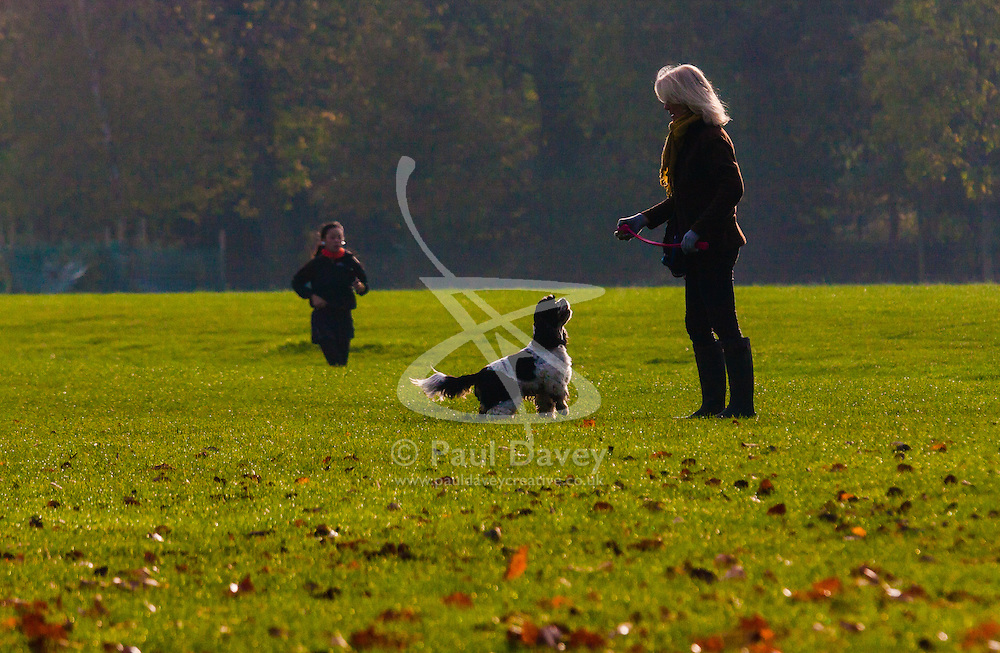 London, November 5th 2014. After a riny night, Londoners wake up to patchy morning sunshine as Autumn leaves herald the approach of winter, with some forecasters predicting extreme conditions. Pictured: A woman plays with her spaniel in Regents Park.
