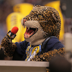 2008 November, 29: Southern University Jaguars mascot sits at the NBA Sports desk during a 29-14 win by Grambling State over Southern University during the 35th annual State Farm Bayou Classic at the Louisiana Superdome in New Orleans, LA.  .