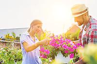 Portrait of mature gardener showing woman buyer flowers on pot in shop