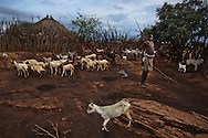 Around the middle of the road between two of Southern Ethiopia's larger towns - Arba Minch and Jinka, there is a signboard that reads &quot;Welcome to Hamer.&quot; The sign marks a dusty road that continues for almost to 100 km, through African bush, towards the region of Turmi, the heart of the Hamer tribe.<br />