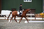 19 - 20th Oct - Dressage
