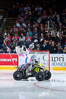 KELOWNA, CANADA - SEPTEMBER 24: Rocky Raccoon, the mascot of the Kelowna Rockets enters the ice against the Kamloops Blazers on September 24, 2016 at Prospera Place in Kelowna, British Columbia, Canada.  (Photo by Marissa Baecker/Shoot the Breeze)  *** Local Caption *** Rocky Raccoon; Mascot;