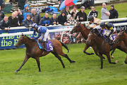 SHAWAAHEQ (5) ridden by Edward Greatrex and trained by Ed Dunlop winning The Alana Amber SonnyAnd Zach Median Auction Maiden Stakes over 7f (£7,500)  during a Very British Raceday at Beverley Racecourse, Beverley, United Kingdom on 8 June 2019.