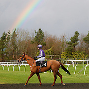 Lingfield 17th January